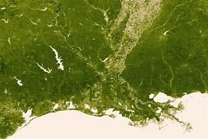NOAA and NASA's Vegetation Map « Inhabitat – Green Design ...