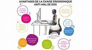 Chaise De Bureau Ballon sellingstg
