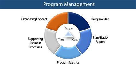 program management program management valueinfinity inc