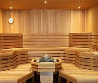 in home sauna Why Infrared Saunas So Important These Days | Hotspring Spas