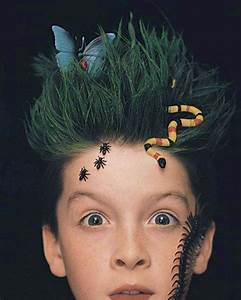 Top 50 Crazy Hairstyles Ideas for Kids family holiday net/guide to family holidays on the internet
