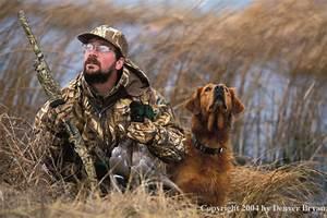 Denver Bryan - Images on the Wildside