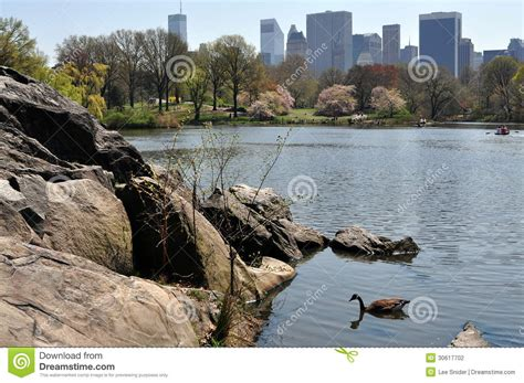 Central Park Boating Times by Nyc Central Park Boating Lake Editorial Image