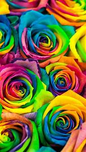 Wallpaper iPhone colorful ⚪️   Color Therapy   Pinterest ...