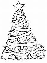 Coloring Tree Colouring Trees Printable sketch template