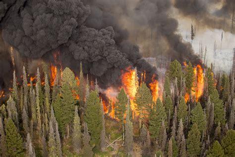 fire behavior subcommittee nwcg