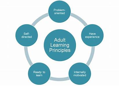 Adult Learners Learning Teaching Network