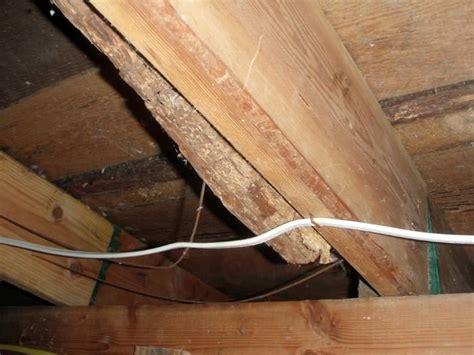 How To Fix Broken Floor Joist by Repairing Sagging Floor Joists Amp Girders In Your Crawl