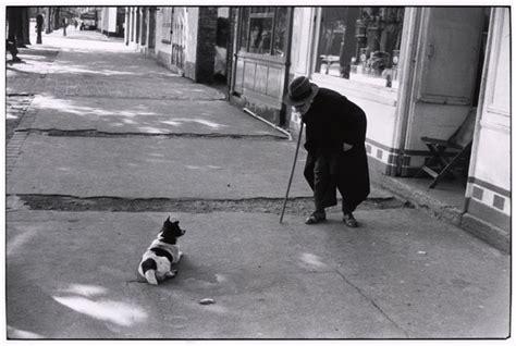 love  dogs kritina kniefs photography blog
