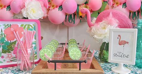 cheap  classy flamingo baby shower party decoration