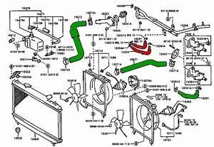 Bulging Upper Radiator Hose