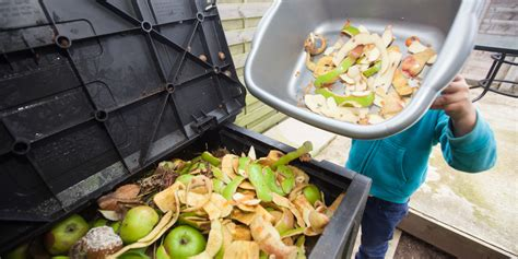 culinary cuisine the true cost of food waste huffpost
