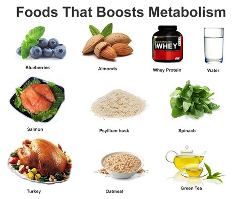 The Top Foods For Fat Loss – Webposting Pro images