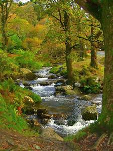 Ireland, Places and Earth on Pinterest