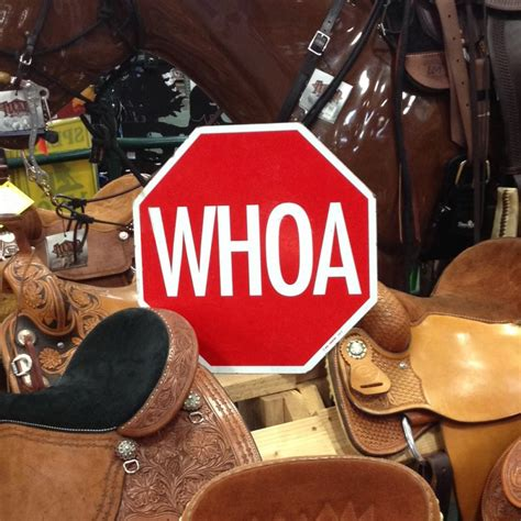 18 In X 18 In Whoa Stop Sign And Other Traffic Sign