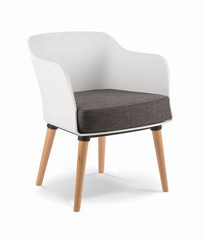 Lobby Armchair Timber Leg Polyprop Chairs Office