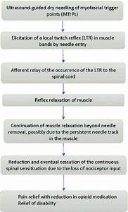 Proposed Mechanism Of Action Of Ultrasound
