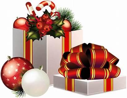 Christmas Gifts Spa Hair