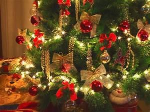 Geschmückte Weihnachtsbäume Christbaum Dekorieren : weihnachtsb ume kaufen was sie bei der wahl beachten sollen ~ Markanthonyermac.com Haus und Dekorationen