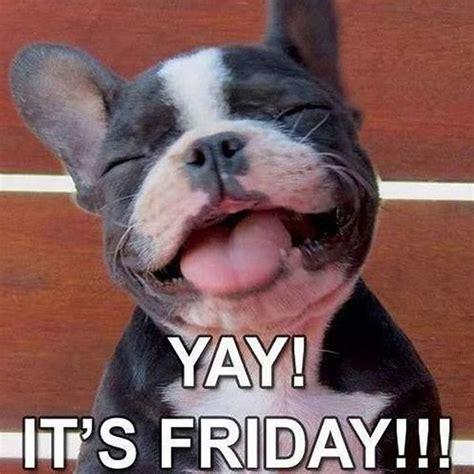 Its Friday Meme Pictures - 20 happy memes that scream quot it s friday quot volume 1 sayingimages com