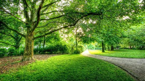 beautiful park  berlin hdr hd wallpaper jpg