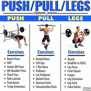 Push And Pull Workouts Bodybuilding