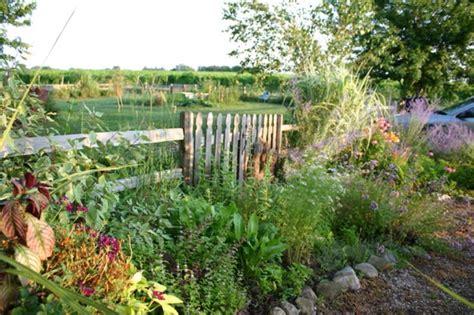 Ideen Fuer Die Gartengestaltung by Pflanzen In Nanopics Ideen Gartengestaltung