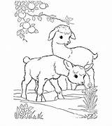 Goat Coloring Printable sketch template