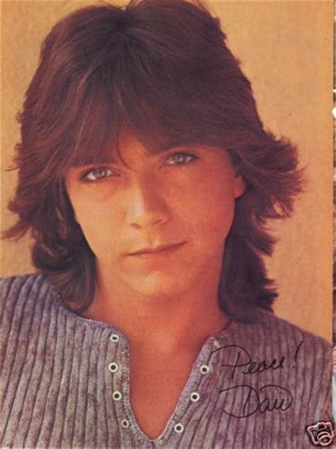 david cassidy sexy david cassidy pinup sexy look keith partridge ztams