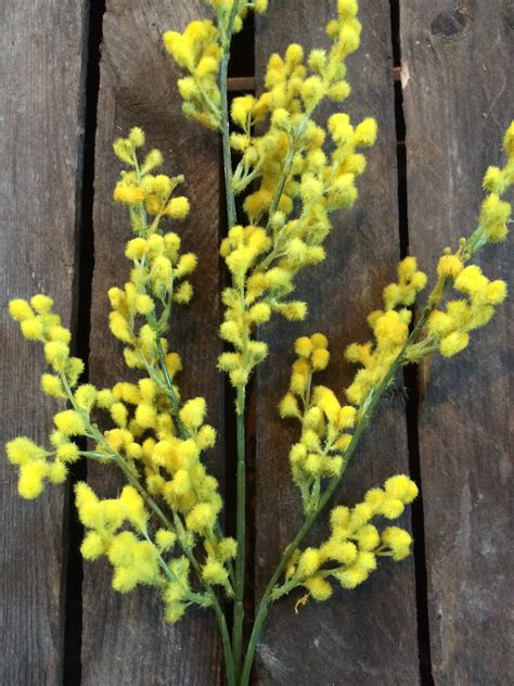 faux yellow mimosa flowers heavenlyhomesandgardenscouk