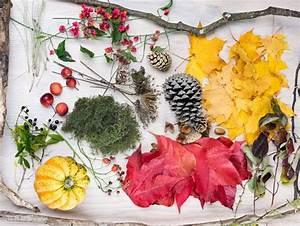 3 Tolle Ideen Fr Die Herbstdeko Zu Hause Myprintcard