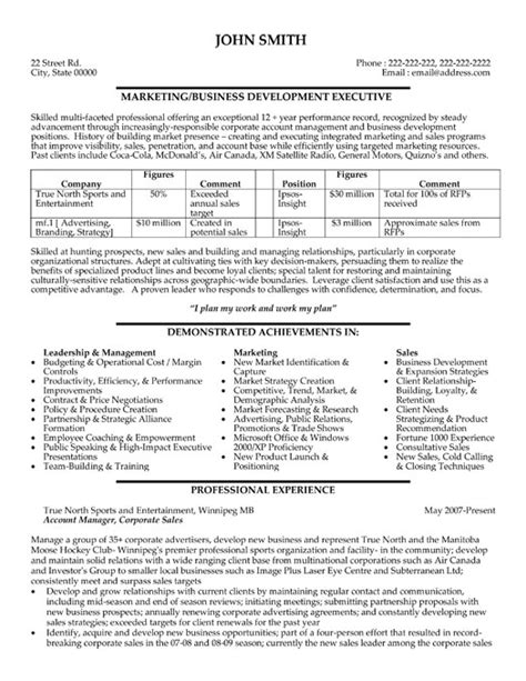 Executive Style Resume Template by Professional Business Development Resumes Writing Resume Sle Writing Resume Sle