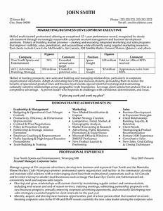 professional business development resumes writing resume With business development executive resume format