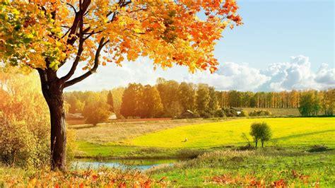 Autumn Landscape Wallpapers 1366x768 #1810 Wallpaper