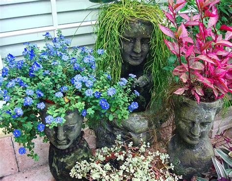 246 Best Images About Florida Container Gardening And