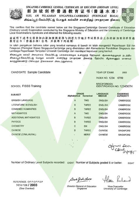 singapore gce  level ace website