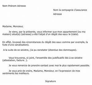 Modèle Lettre Déclaration Sinistre : comment d clarer un un sinistre ou un d g ts des eaux ~ Gottalentnigeria.com Avis de Voitures