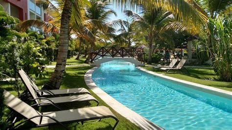 swim up room picture of now garden punta cana bavaro