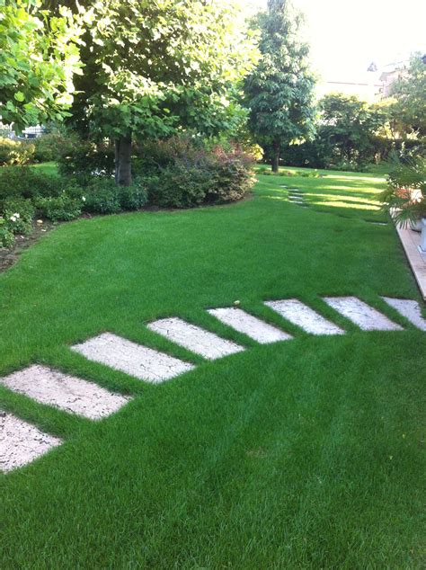 manutenzione tappeti manutenzione tappeti erbosi vicenza