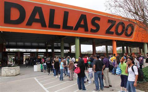 zoo dallas texas sights sounds artandseek calendar