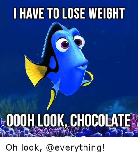Memes And Everything Funny - i have tolose weight oooh look chocolate oh look funny meme on sizzle