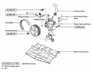 1991 Toyota Corolla Serpentine Belt Routing And Timing