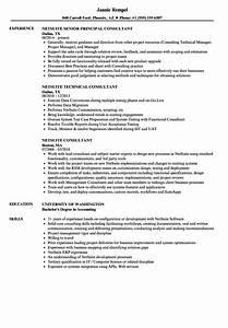 Netsuite consultant resume samples velvet jobs for Netsuite consultant resume