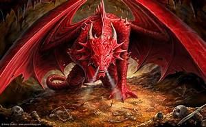 70+ Fierce Dragon Designs from deviantART  Ahmad Hania Blog