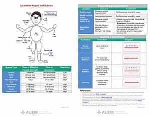 Laceration Repair And Sutures