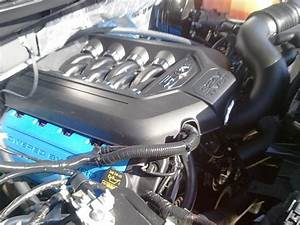 5 0 Engine Covers - Ford F150 Forum