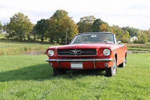64.5 Ford Mustang CONVERTIBLE - MINT CONDITION - RARE YEAR for sale - Ford Mustang 1964 for sale ...