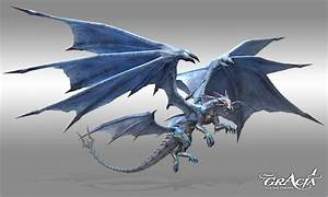 Wind Dragon | ... Final Translations - Wind Dragon ...
