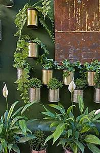 tin can garden pictures photos and images for