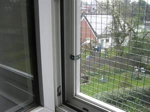Katzenschutznetz Ohne Bohren : katzengitter f r fenster katzennetz profi ~ Watch28wear.com Haus und Dekorationen
